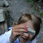 Fundstück im Farnwald