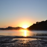 Morgennebel bei Paihia, Bay of Islands