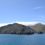 Wellington nach Picton
